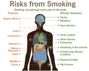 smoking lowers testosterone