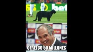 Ofrezco 50 millones
