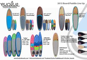 2015 flyer Evolve_001