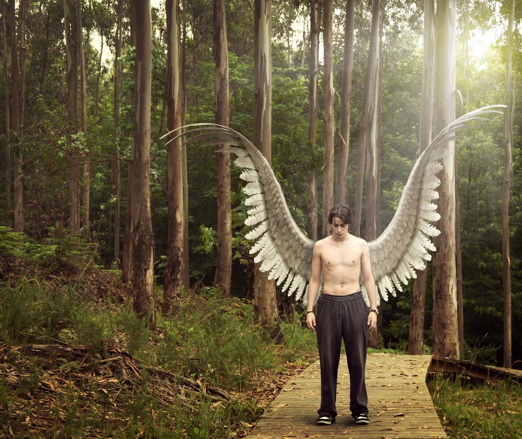 сфотографируйтесь заново фото людей с крыльями экземпляры