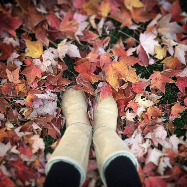 United Colours of Autumn Love.