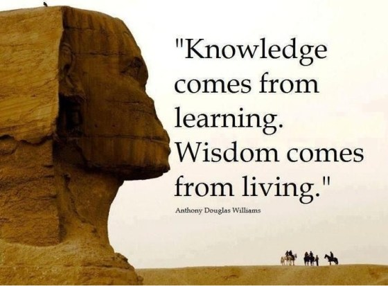 knowledge vs wisdom 2