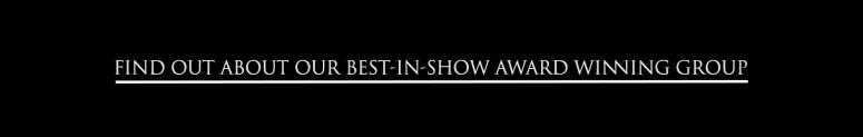 find out about best in show