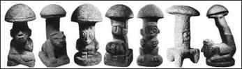 mushroom-1 copy