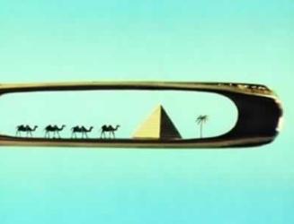 needle-camel