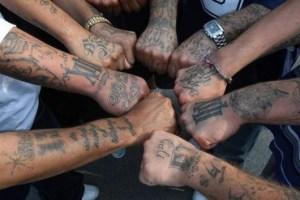criminal-gangs-e1368138409241
