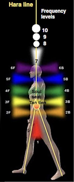 How To Energetically Repair Or Replace an Organ Or Body Part In Our