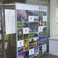 素敵な思い出を!狛江市役所が記念撮影コーナーで【バックボード活用】