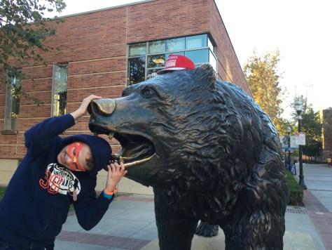 BRUIN BEAR EATS A CHILD