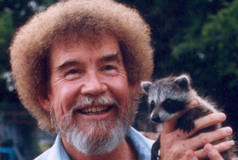 bob-ross-racoon