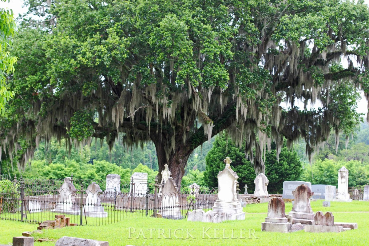 All vacation photos, including the cemeteries, completely updated and in one place!