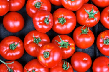 Tomatoes from The Good Earth Farm, Gabriola Island