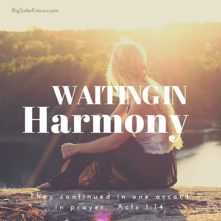 WaitingHarmony_BSK