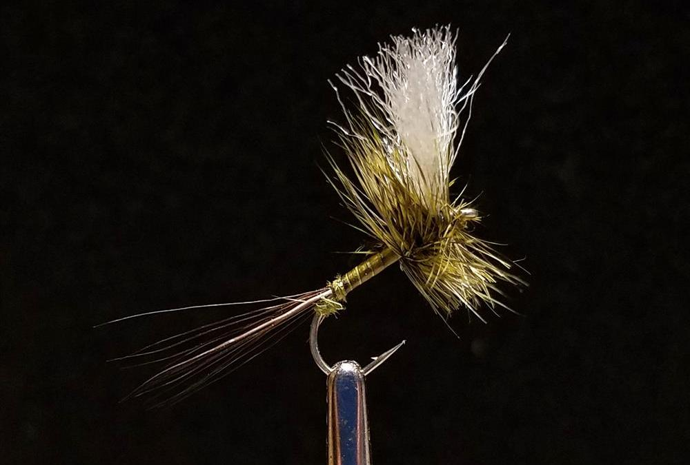 Big Sky Anglers Featured Fly – JoJo's Green Drake