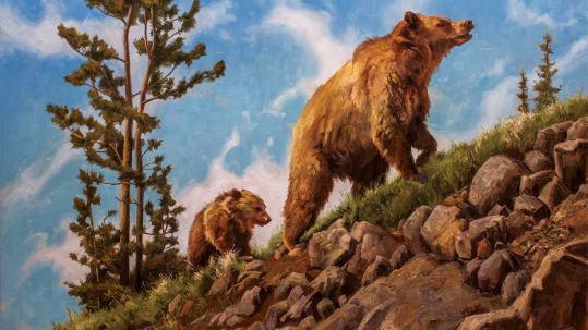 Mark McKenna wildlife painting