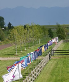 The flags that line the main drive of Rebecca Farm represent all of the states and countries that competitors, judges and invited guests hail from. Images courtesy Rebecca Farm