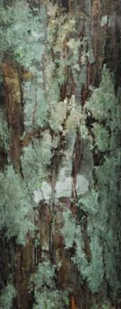 """""""Red Oak"""" (Bark Series)   Oil on Linen   30"""" x 12"""""""