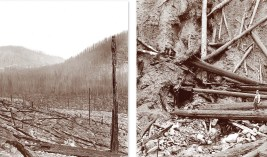"Left: The ""Big Burn"" of 1910. View from the Northern Pacific Railroad grade after the fires raced through Lolo National Forest. Right: Mouth of the mine in which Ranger Ed Pulaski held 50 men as the fire burned over, this saving their lives. Photos Courte"