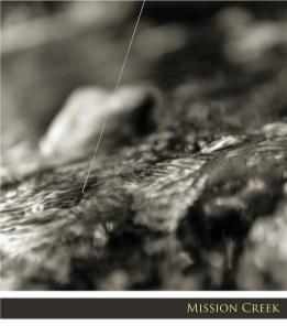 FF09_photo-essay-MISSION-CREEK_web.jpg