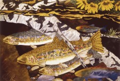 """Gold Creek Trout"" 