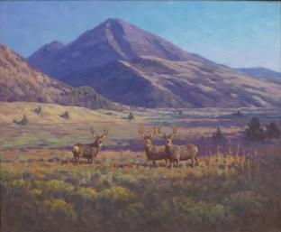 """""""Mule Deer""""   Oil on Linen   20"""" x 24""""   Emigrant Peak, Montana   Photo by David Swift"""