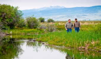 The O'Dell Project is an intensley collaborative, decade-long wetlands and floodplain restoration project in the Madison Valley. Jeff Lazlo of Granger Ranches and Jon Jourdonnais, PPL Montana's Manager of Hydro Licensing and Compliance, walk along Pha