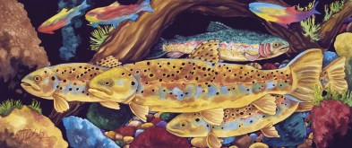 """Magnificent Seven Trout"" 