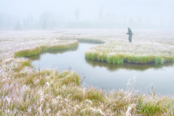 A frosty, foggy morning in Yellowstone Park. Small streams often call for light tackle, and the rod being fished here is an Orvis Flea from the mid-1970s. At 6.5 feet for a 4-weight, it's ideal for a stream this size. Photo by John Juracek