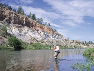 In the scenic canyon tailwater below Montana's Tongue River Dam, fly anglers have a shot at rainbows, browns and smallmouth bass.