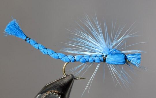 Blue damsal fly by Jeremie Hollman