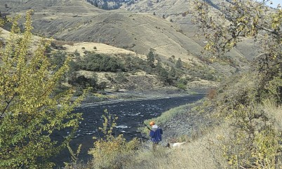Hunting for grouse in the canyon.