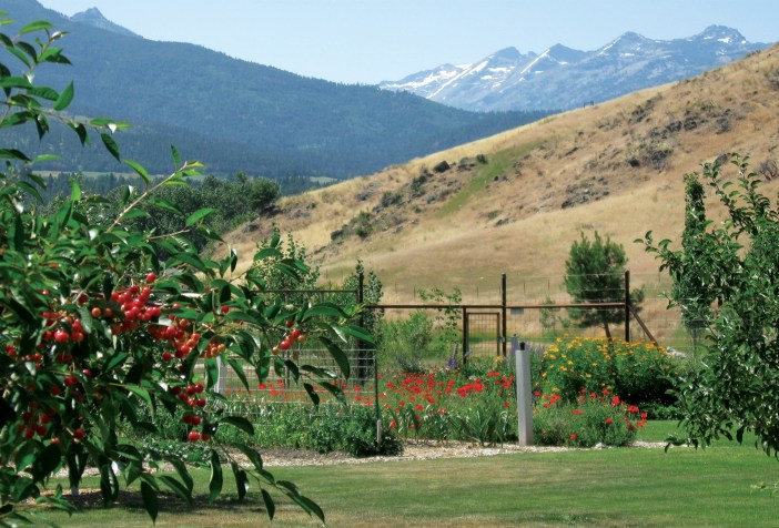 The orchards and gardens provide a bounty of fresh produce for the table, including apples, plums, cherries and pears along with berries of every kind, beets, peas, squash and a wide variety of greens. Photo courtesy Triple Creek Ranch