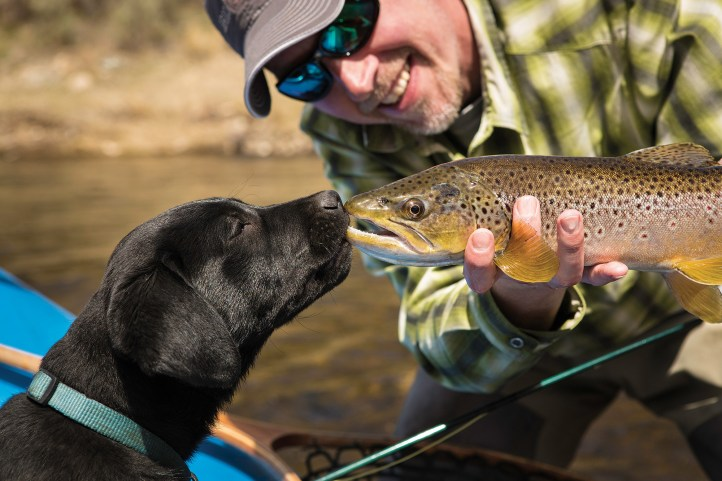 "David Thompson, owner of Brickhouse Creative in Bozeman, was fishing with his four-month-old Lab Jasper on the Smith River when Thompson's friend, Justin, shot the image below. ""I've had at least one guide friend tell me that Jasper's the best boat dog he's ever fished with,"" Thompson said. ""He's just a pretty chill individual. Happy to hang out, doesn't try to chase the fish. The downside is that he would always like to sit on your lap."" Photo by David A. Thompson"