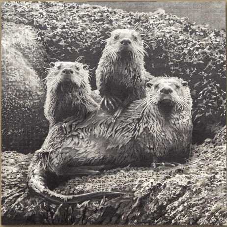 """""""Otters at Echo Bay"""" 