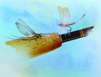 may_fly_f.w._thomas_14.jpg