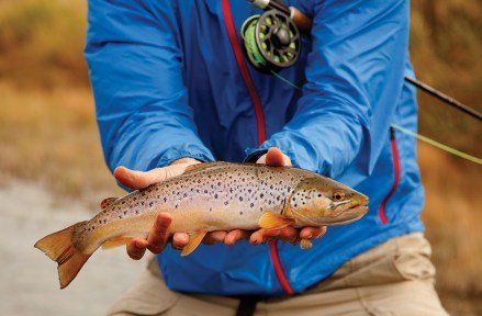 One of the beautiful browns caught during the trip.