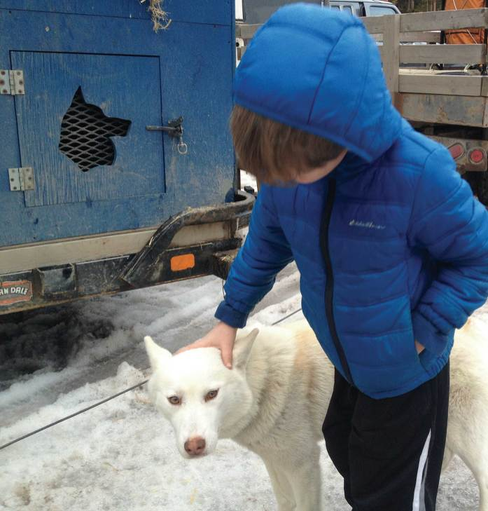 Finn pets a sled dog at the Race to the Sky. • Even the pillows at the Izaak Walton Inn remind you of its railroad roots.