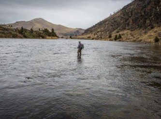 Wading into the Madison's chilly spring flow near Bear Trap Canyon.