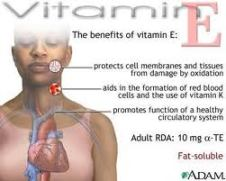 Functions of Vitamin E