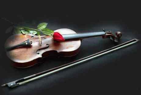 минус скрипка