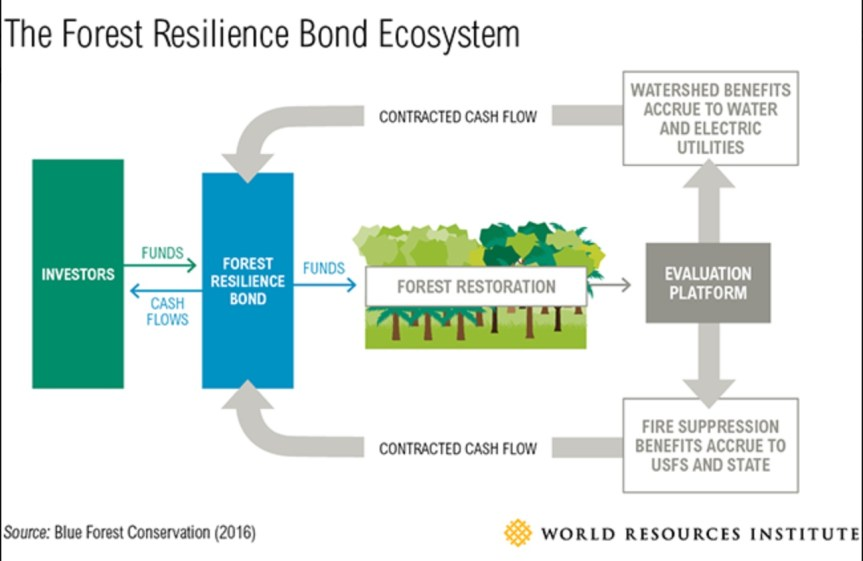 Forest Resilience Investment to reduce wildfire risks.