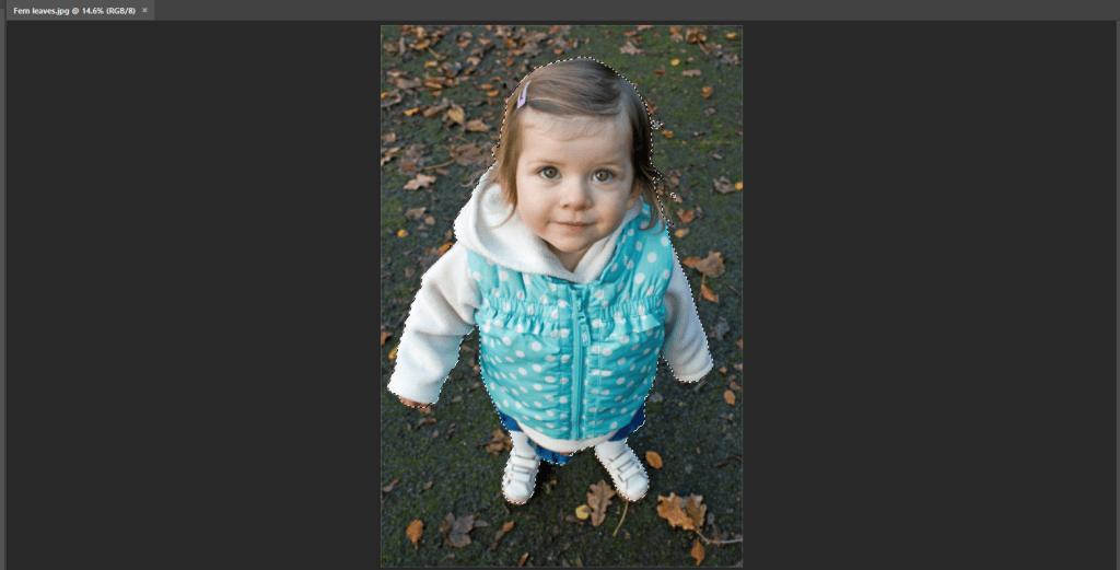 Photoshop Select Subject