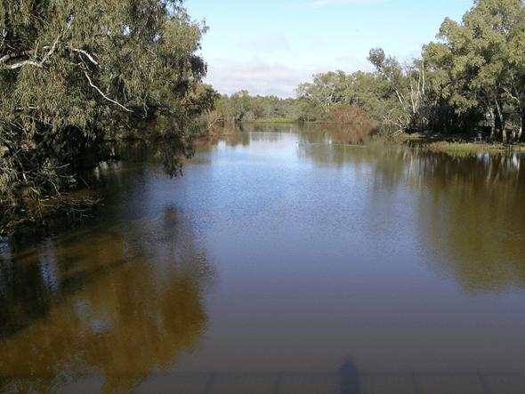 The Bogan river