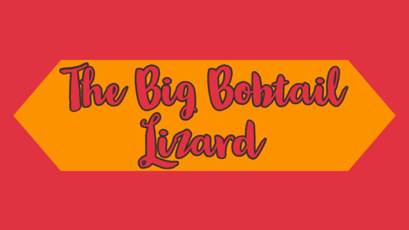 The Big Bobtail Lizard