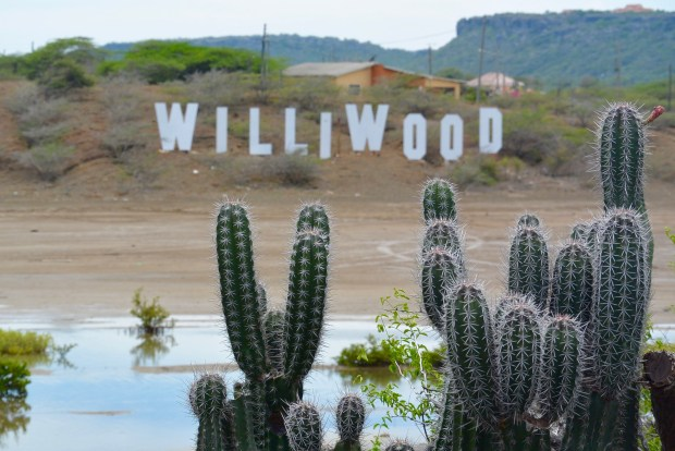 Williwood Sign Curacao