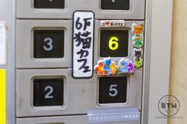 Elevator buttons highlighting the floor with the cat cafe in Tokyo, Japan