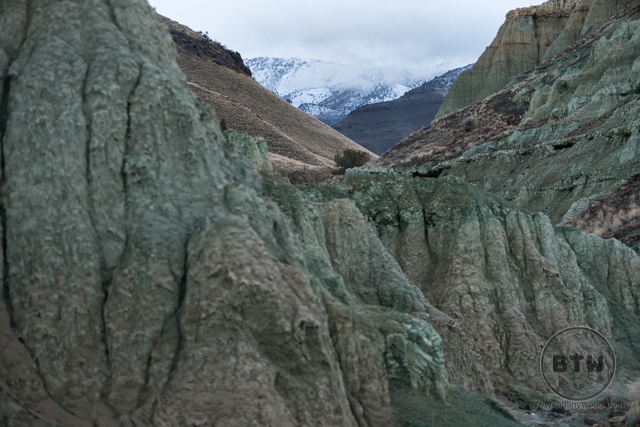 Green walls of Oregon's Blue Basin