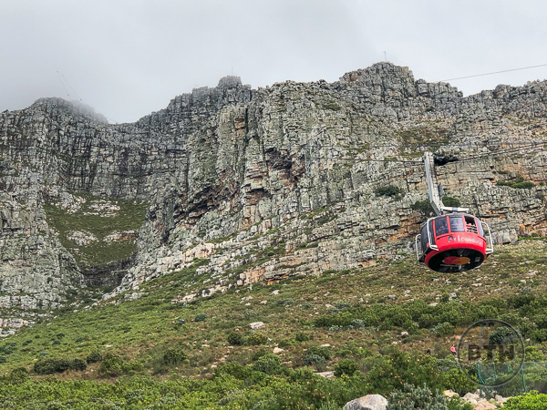 table-mountain-14