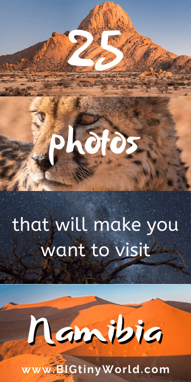25 Photos That will Make You Want to Visit Namibia | You might not be considering Namibia for your next trip yet, but these photos aim to change your mind! Click to see some of the amazing sights this amazing country has to offer! | #namibia #namibiaphotos #africatravel #safari #dunes #shadeadventures