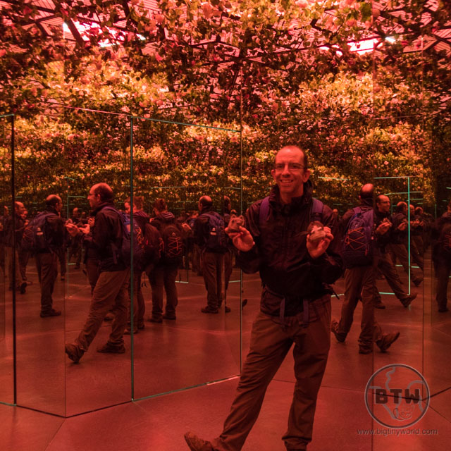 Aaron and the travel kitties in a room of mirrors at the Illusion Museum in Zagreb, Croatia